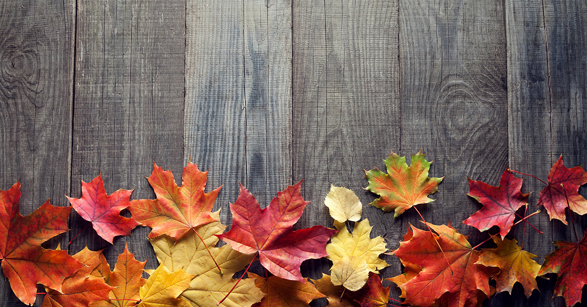 Fall Spruce Up - Post